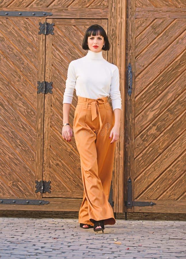 Modnego stroju schudni?cia wysoka dama Kobiety pewnie spacer Kobiety brunetki stojaka outdoors modny drewniany t?o zdjęcie stock