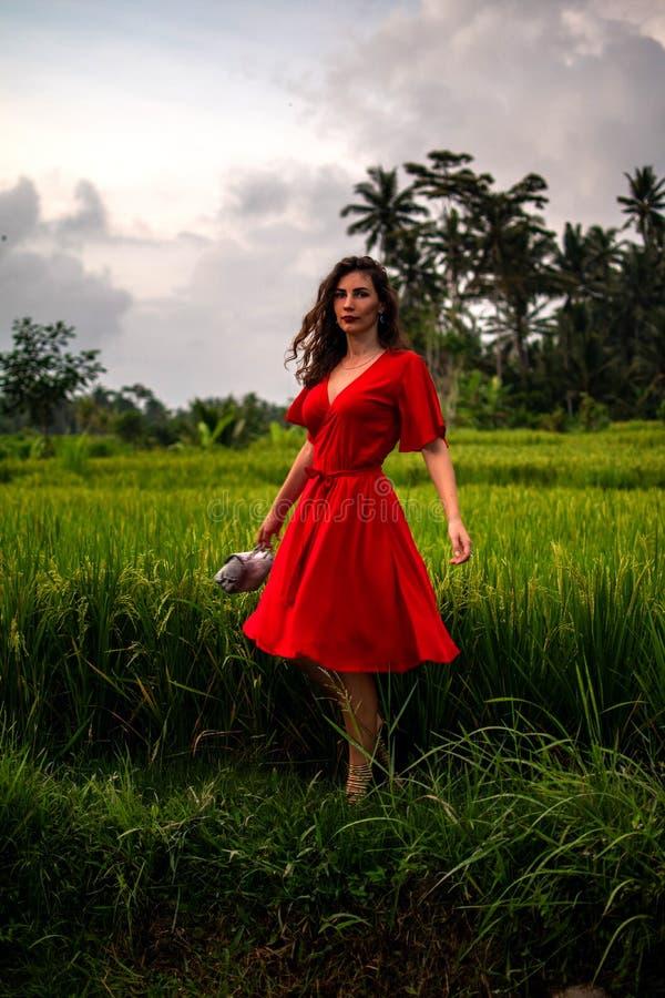 Modnego wzorcowego mienia snakeskin pytonu rzemienna torba, Elegancki strój Model w dżungli Pojęcie w magazynie, miejsce fotografia stock