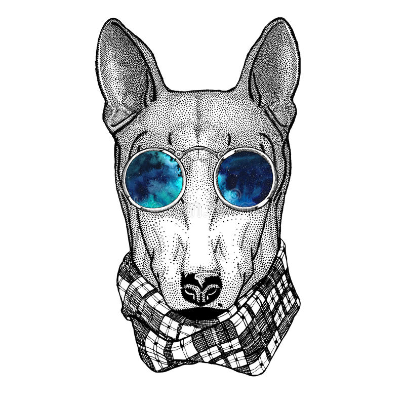 Modnisia Bull Terrier psi wizerunek dla tatuażu, logo, emblemat, odznaka projekt ilustracji