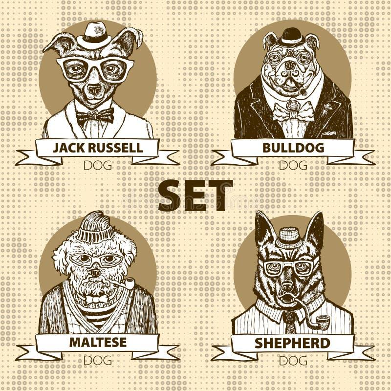 Modnisia zwierzę ustawiający pies, ampuły psi trakeny grupa, wektor royalty ilustracja