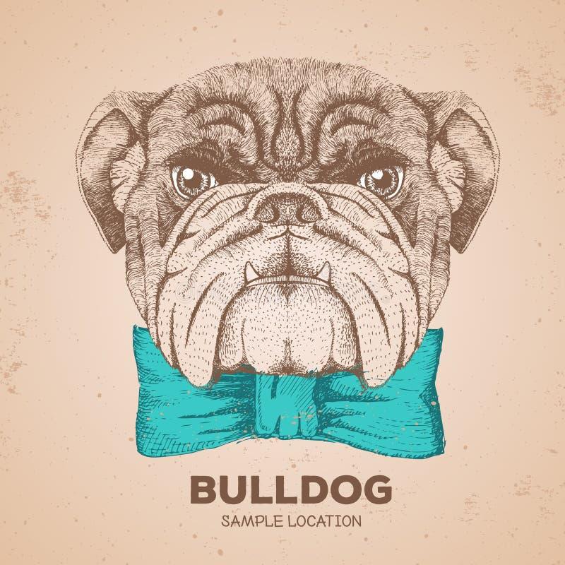 Modnisia zwierzęcia buldog Ręka rysunkowy kaganiec zwierzę pies royalty ilustracja