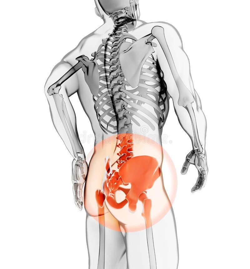 Modny bolesny zredukowany promieniowanie rentgenowskie, 3D ilustracja zdjęcia stock