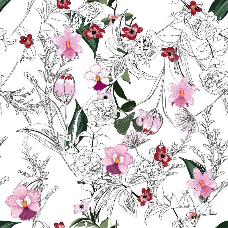 Modny jaskrawy lata kwitnienia ogród, lasowy kontur i ręka ilustracja wektor