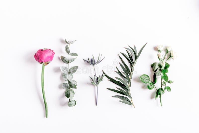 Modny projekt z kwiatu wzorem na białym tło odgórnego widoku egzaminie próbnym up zdjęcie royalty free