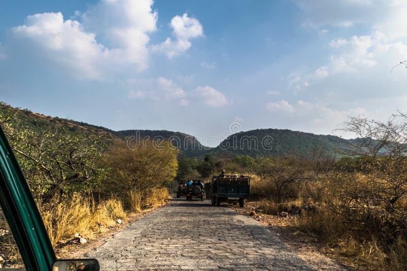 Modo al parco nazionale immagine stock libera da diritti