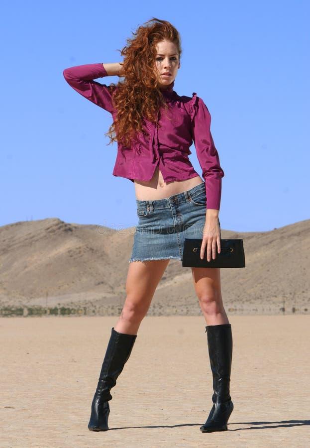 Modo del deserto immagine stock