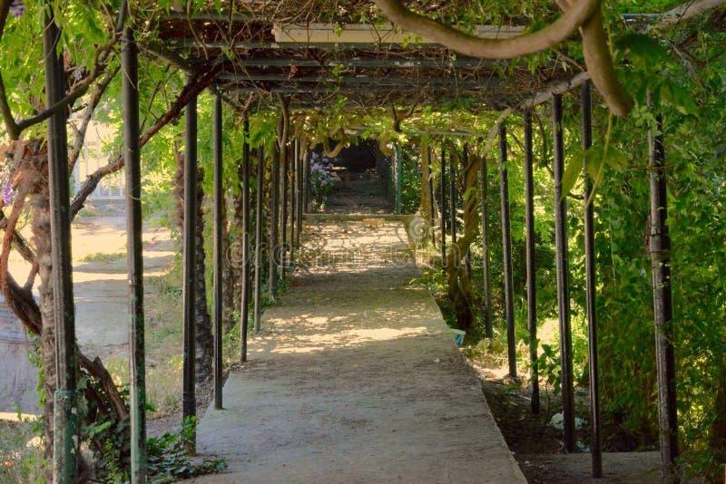 Modo del giardino fotografie stock libere da diritti