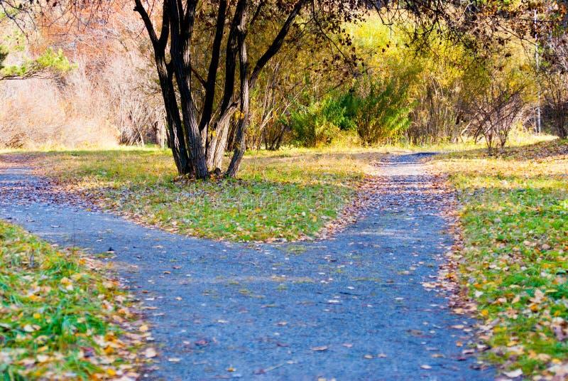 Modo del percorso con due la direzione, concetto di scelta di vita fotografia stock