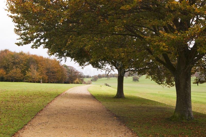 Modo della camminata di autunno, Inghilterra fotografia stock libera da diritti