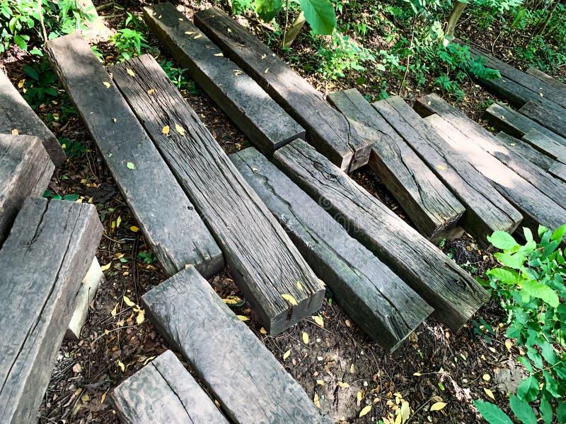 Modo della passeggiata fatto con il ceppo di legno immagine stock