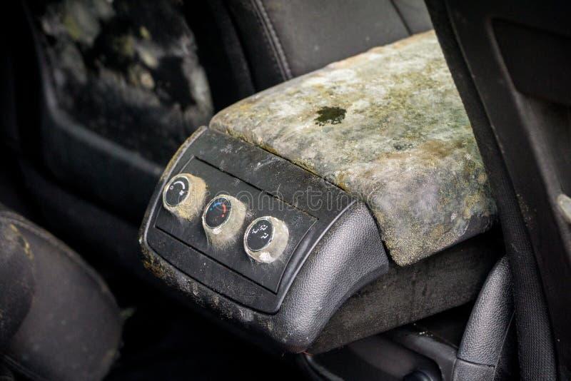 Modo dentro de un coche inundado imagen de archivo libre de regalías