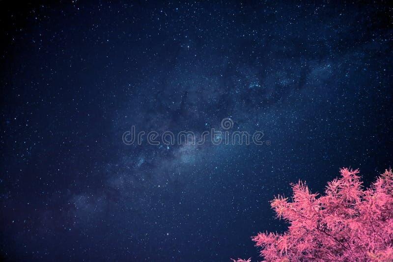 Modo di Art Styled Deep Blue Milky di schiocco sopra il cielo notturno immagini stock