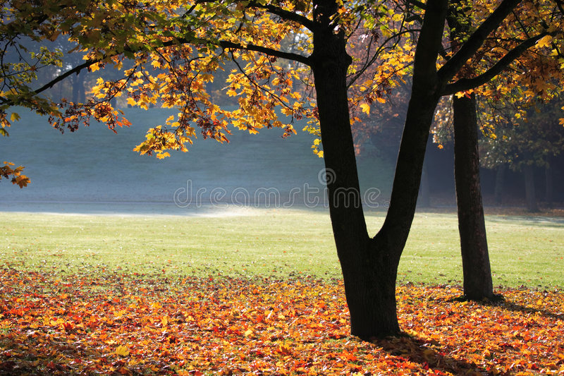 Modo do outono foto de stock