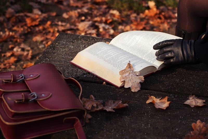 Modo do outono Jovem mulher que lê um livro no parque na queda fotografia de stock royalty free