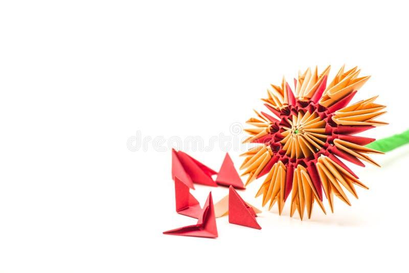 Modular origami flower with blocks isolated on white background royalty free stock image