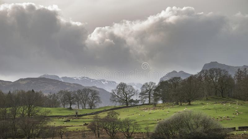 Mody landscape image of Loughrigg Tarn in UK Lake District during dramatic evening in Spring. Beautiful landscape image of Loughrigg Tarn in UK Lake District stock photography