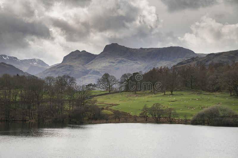 Mody landscape image of Loughrigg Tarn in UK Lake District during dramatic evening in Spring. Beautiful landscape image of Loughrigg Tarn in UK Lake District royalty free stock image