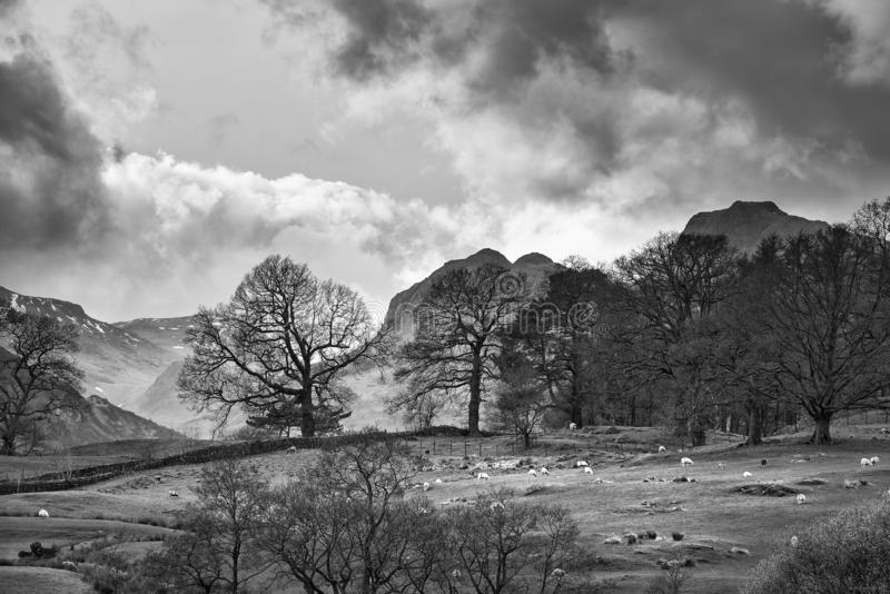 Mody landscape image of Loughrigg Tarn in UK Lake District during dramatic evening in Spring in black and white. Beautiful landscape image of Loughrigg Tarn in royalty free stock photo