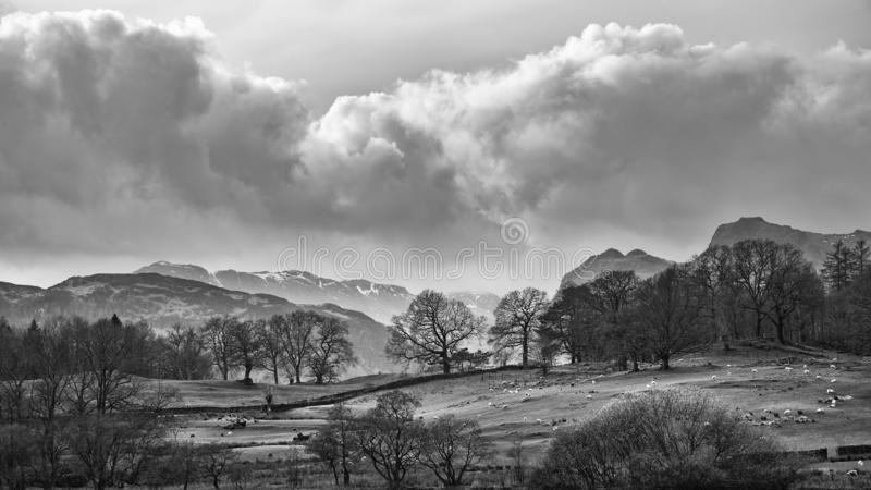 Mody landscape image of Loughrigg Tarn in UK Lake District during dramatic evening in Spring in black and white. Beautiful landscape image of Loughrigg Tarn in stock images