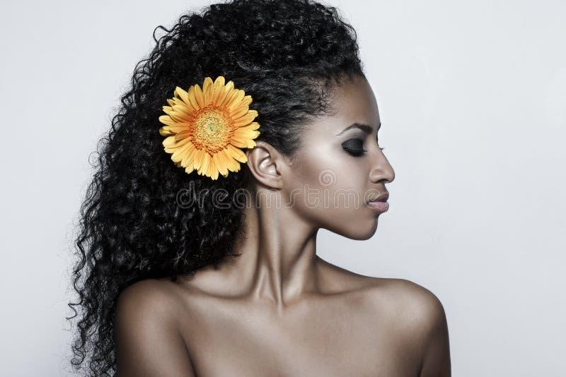 mody portreta seksowna kobieta zdjęcie royalty free