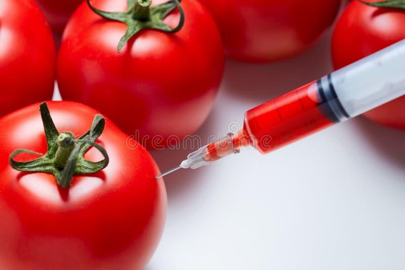 modyfikacja genetyczna zdjęcie stock