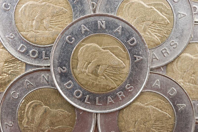 Moeda canadense
