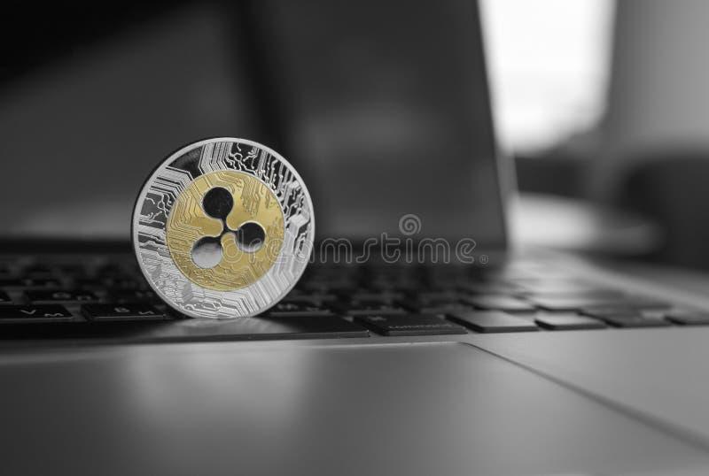 Moeda de prata da ondinha do ouro em um close up do teclado do portátil Mineração de Blockchain Dinheiro de Digitas e cryptocurre foto de stock