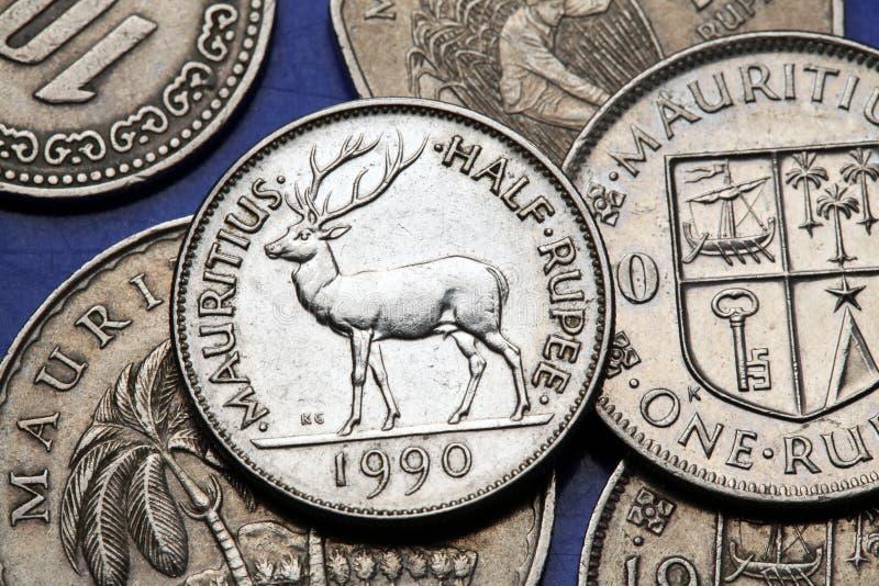 Moedas de Maurícia imagens de stock royalty free