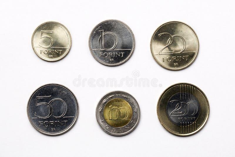 Moedas húngaras em um fundo branco imagem de stock