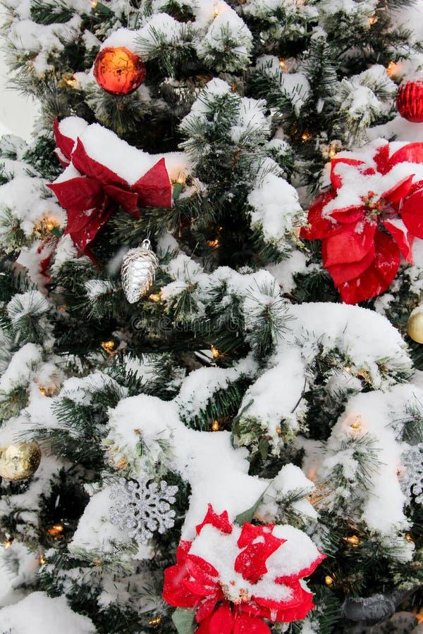Moeder Emmanuel Church Christmas Tree royalty-vrije stock afbeelding