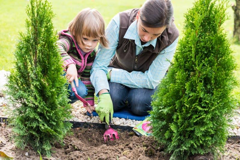 Moeder en dochter die tulpenbollen planten royalty-vrije stock fotografie