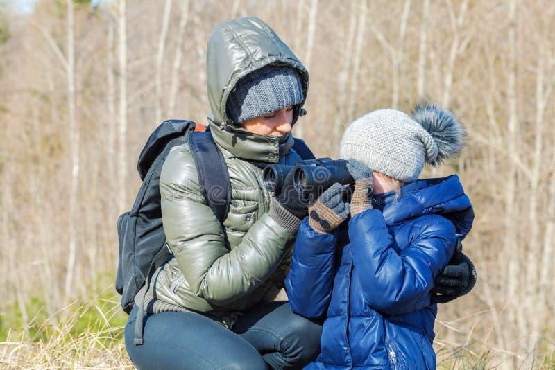 Moeder en dochter die verrekijkers met behulp van bij openlucht in bos stock afbeeldingen