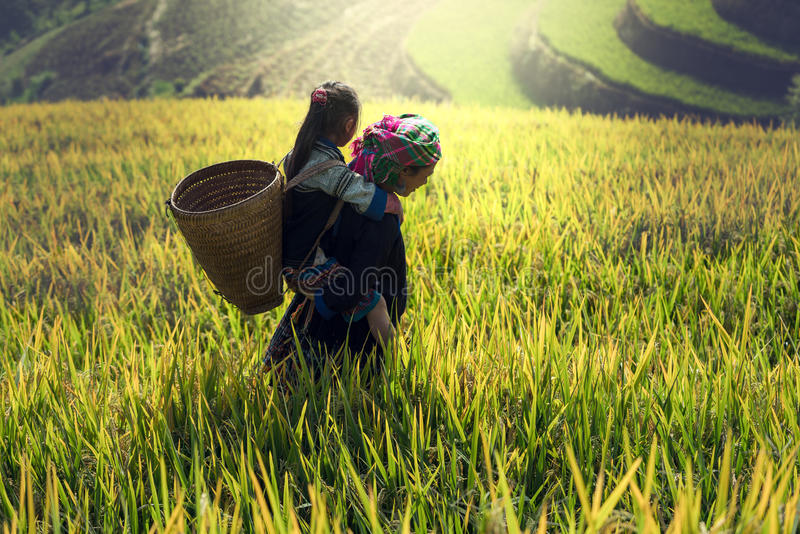 Moeder en dochter op cornfield stock afbeeldingen