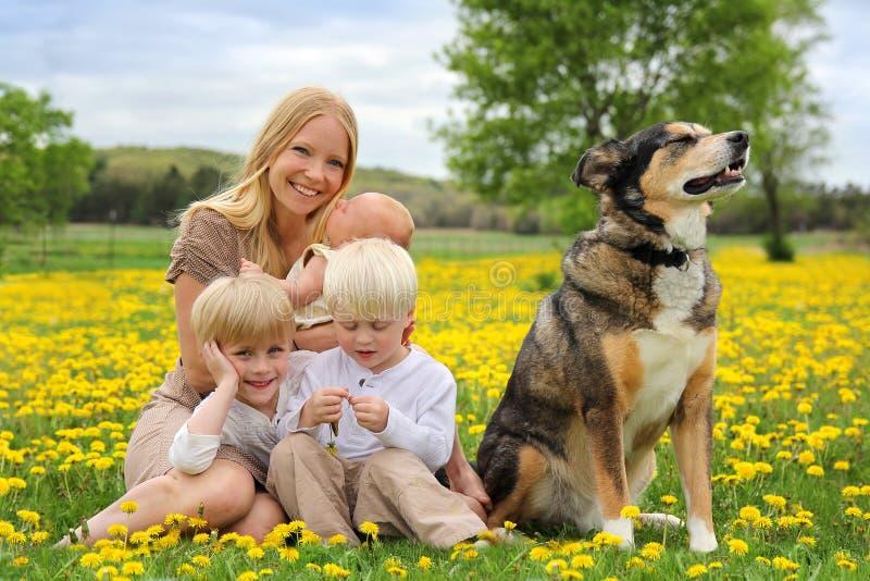 Moeder en Drie Kinderen en Hond het Spelen in Bloemweide stock foto