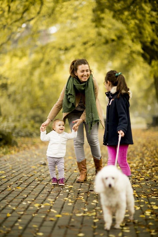 Moeder en twee meisjes die met hond in het de herfstpark lopen stock afbeeldingen