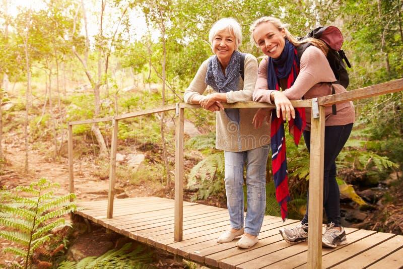 Moeder en volwassen dochter op een brug in een bos, aan camera royalty-vrije stock afbeelding