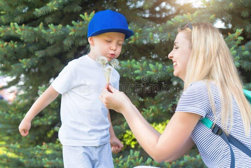 Moeder en weinig zoon die op een paardebloem blazen royalty-vrije stock afbeelding