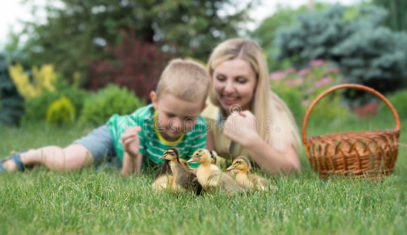 Moeder en zoon die op gras liggen en als een kleine eendgang kijken stock foto
