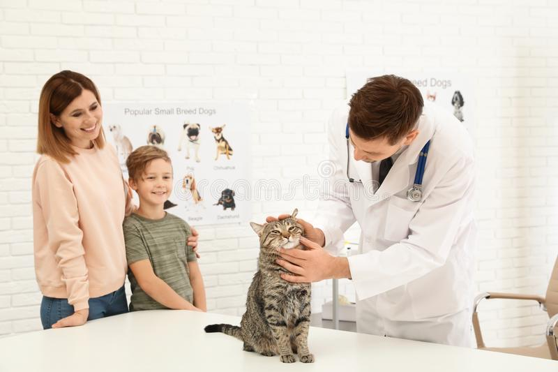 Moeder en zoon met hun huisdieren bezoekende dierenarts in kliniek Kat stock afbeelding