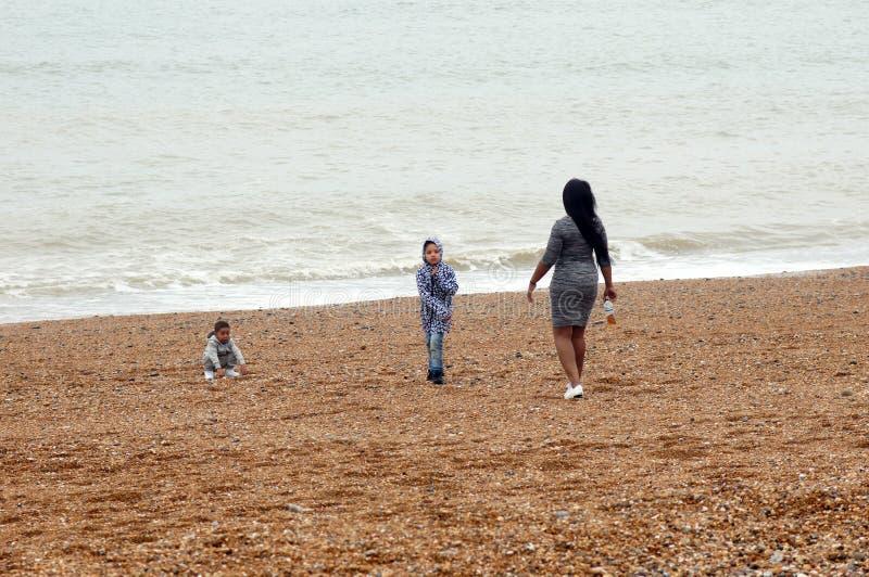 Moeder met haar jonge geitjes op het strand royalty-vrije stock afbeelding