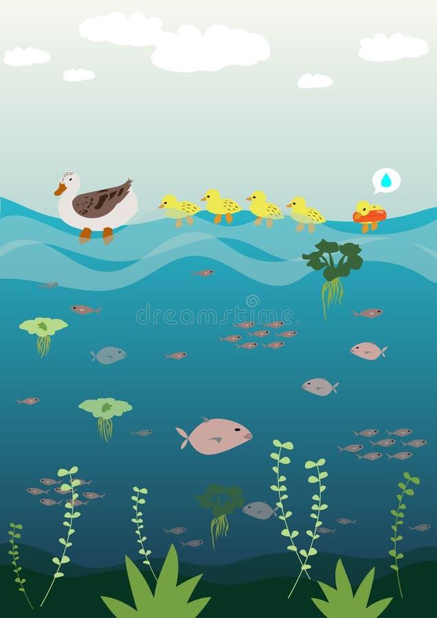 Moedereend die haar baby onderwijzen om te zwemmen royalty-vrije illustratie