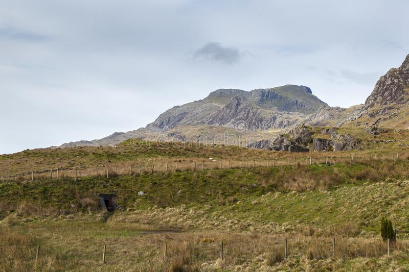 Moelwyn Bach, Snowdonia. Moelwyn Bach viewed from the roadway that leads to Cwmorthin slate Quarry, Tanygrisiau stock images