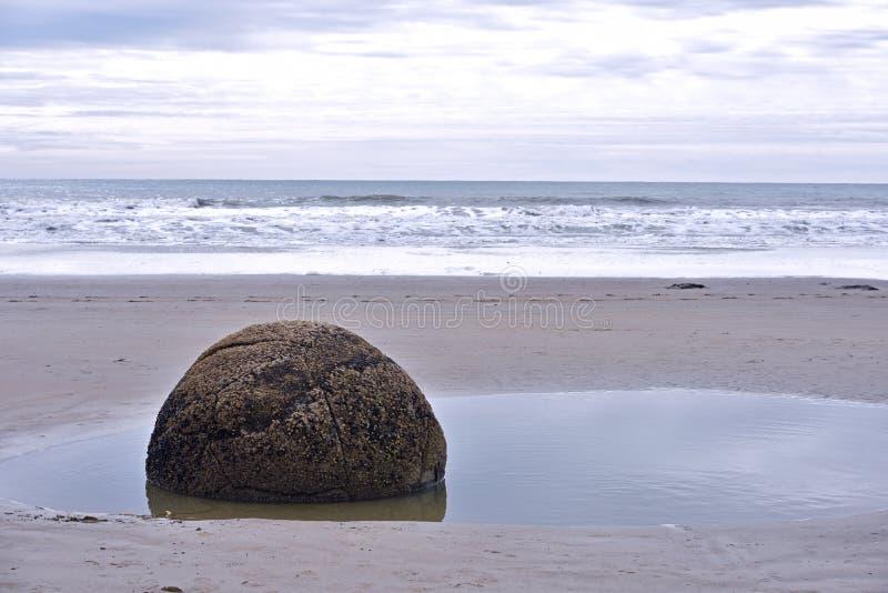 Moeraki boulders, NZ. Moeraki boulders in New Zealand South Island royalty free stock photo