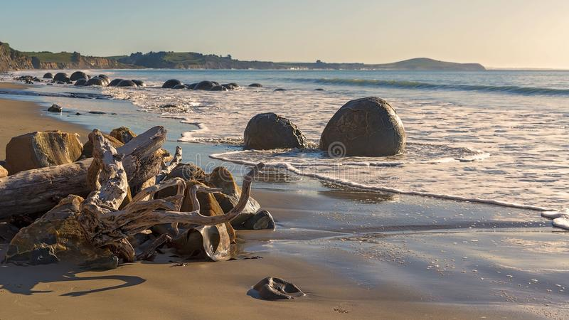 Moeraki Boulders On The Otago Coast Of New Zealand. Driftwork on the beach on the Otago coast of New Zealand next to the tourist attraction of the Moeraki stock photo