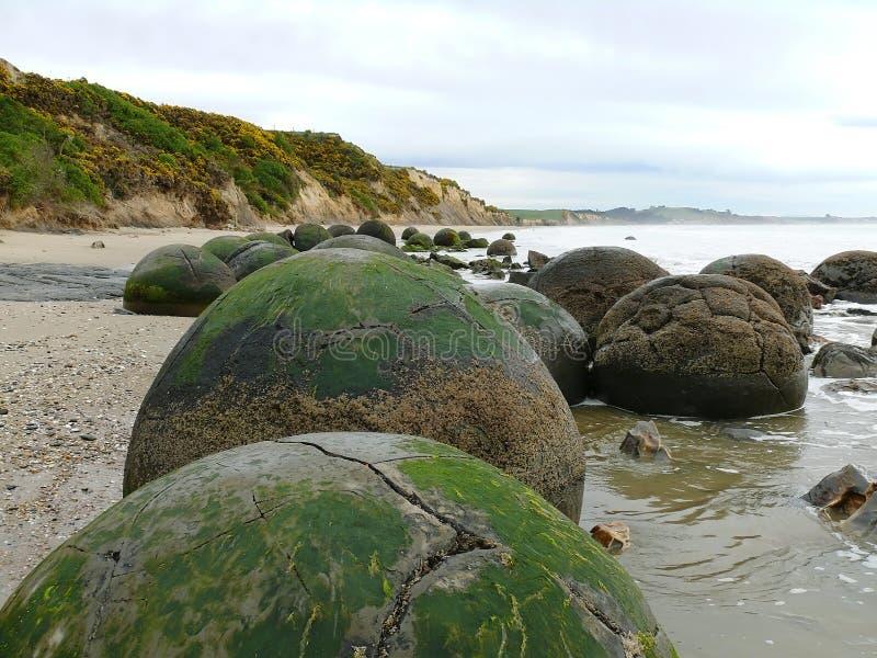 Moeraki Boulders. In south island, New Zealand royalty free stock photos