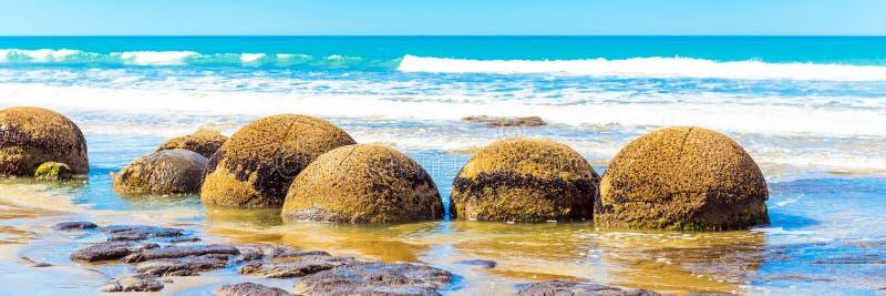 Moeraki głazy na Koyokokha wyrzucać na brzeg w Otago regionie, Nowa Zelandia obraz royalty free