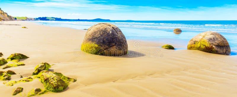 Moeraki głazy na Koyokokha wyrzucać na brzeg w Otago regionie, Nowa Zelandia Odbitkowa przestrzeń dla teksta zdjęcia royalty free
