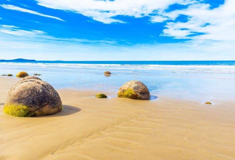 Moeraki głazy na Koyokokha wyrzucać na brzeg w Otago regionie, Nowa Zelandia Odbitkowa przestrzeń dla teksta fotografia royalty free