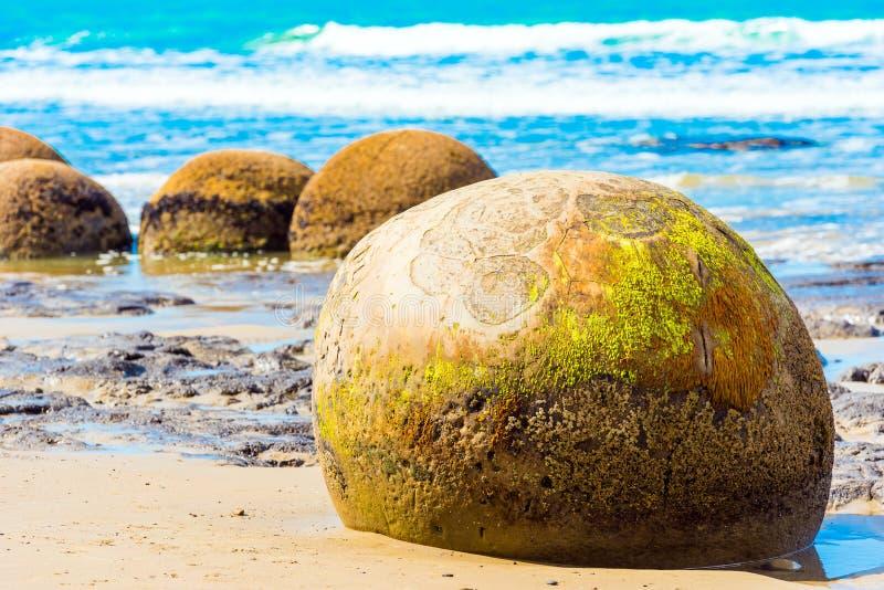 Moeraki głazy na Koyokokha wyrzucać na brzeg w Otago regionie, Nowa Zelandia zdjęcie royalty free