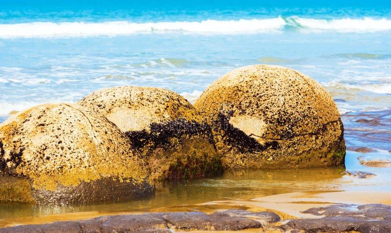 Moeraki głazy na Koyokokha wyrzucać na brzeg w Otago regionie, Nowa Zelandia zdjęcia royalty free